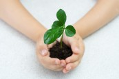 How-To-Get-Children-Interested-In-Growing-Plants_-696x464